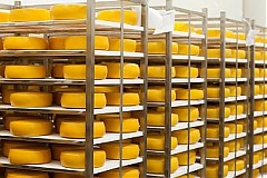 Latvijas piens begins exporting cheese to Sweden