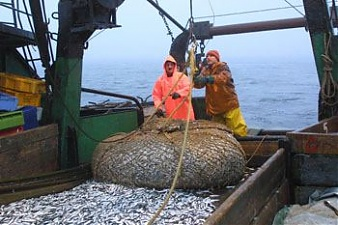 EU ministers agree on 2018 catch limits in Baltic Sea ...