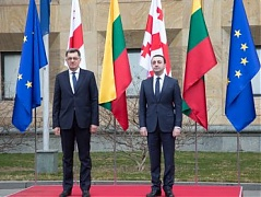 Lithuanian PM calls for closer bilateral cooperation with Georgia