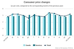 During the year, the average level of consumer prices increased by 3.2%