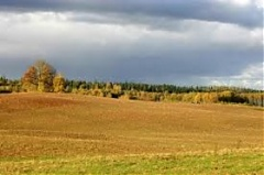 Latvia: Land Fund has acquired 200 properties for EUR 14 mln in 9 months