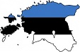 Estonian state wins 60% of its court cases in 2011