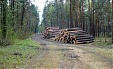 Latvian State Forests to pay dividends to the state in 2 instalments