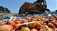 Putin extends embargo on Western food imports through 2018
