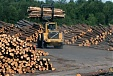 Latvian exports of forestry products down 7.3% in 9 months, imports down 3.2%